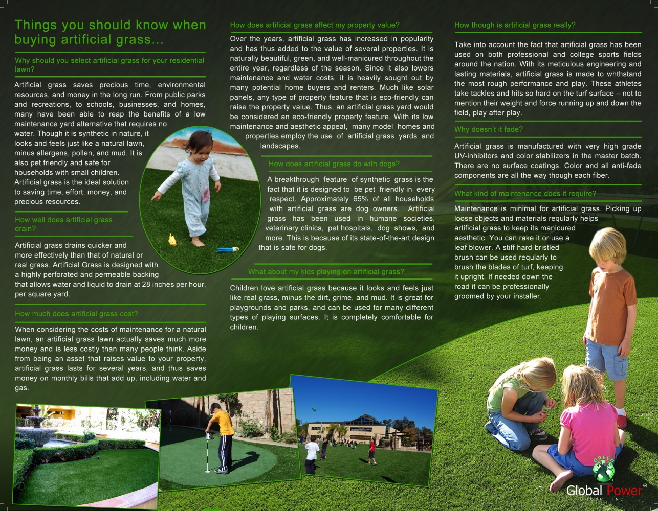 Green Global 3 fold brochure (back)