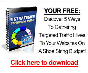 Discover 5 Ways To Gathering Targeted Traffic Hives To Your Websites On A Shoe String Budget!
